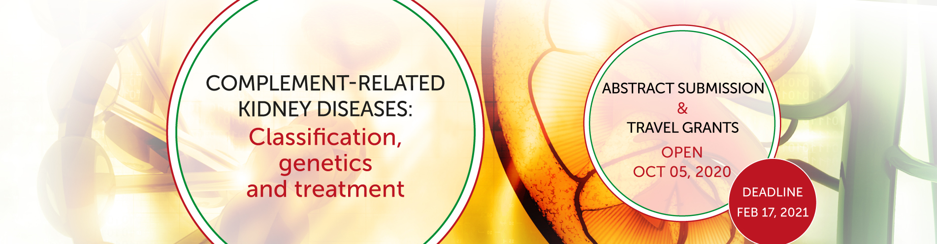Don't miss ISN Frontiers Meeting on Complement-related kidney diseases