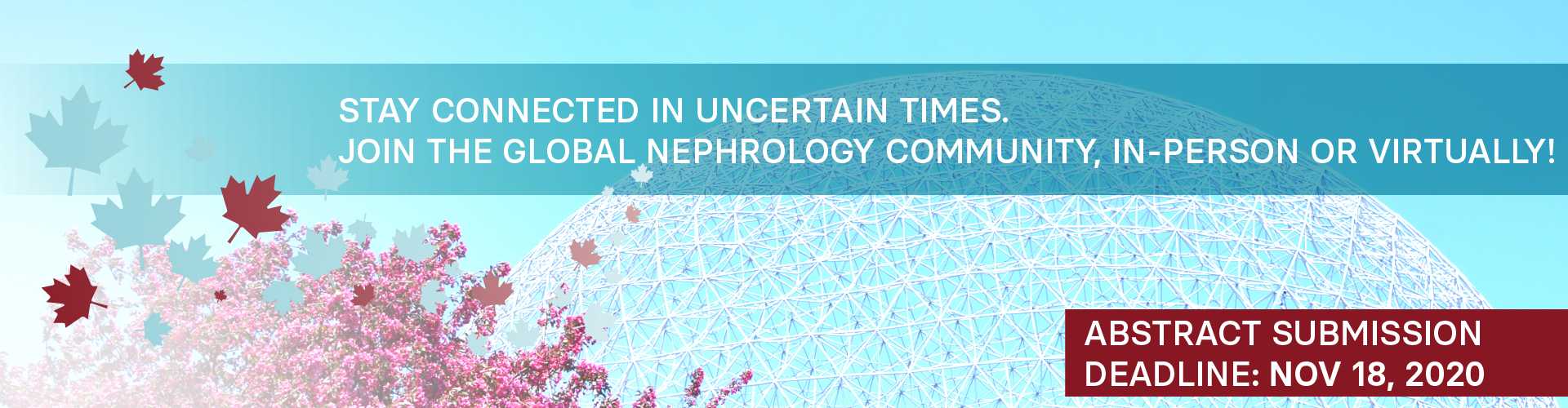 Join the global nephrology community, in-person or virtually, at the World Congress of Nephrology 2021