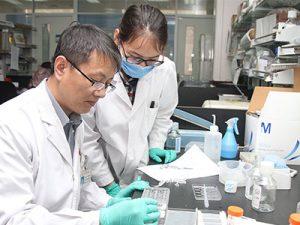 World Kidney Fund - Research