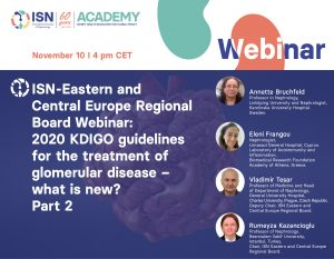 ISN Eastern and Central Europe Regional Board webinar