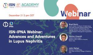 Advances and Adventures in Lupus Nephritis